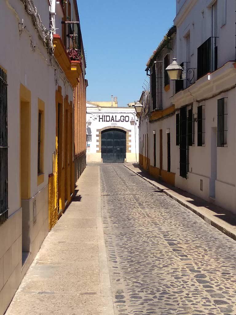 Bodegas Emilio Hidalgo en Jerez